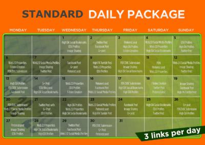 30 Day SEO Plan - STANDARD